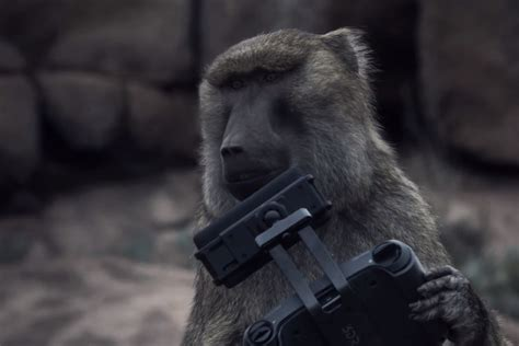 Monkeys discover drones in Space Odyssey-style teaser for