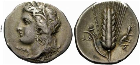 stater of Metapontion, 325-280 BC