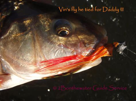 2Bonthewater Guide Service - Reports December 7, 2013 I