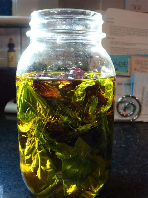 How to Make Basil-infused Olive Oil   Boston Food & Whine