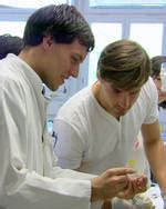 PhD-Studiengang Medical Life Science and Technology | TUM