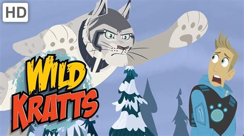 Wild Kratts 🐈🐇 The Lynx and the Hare Happy Holidays! Kids